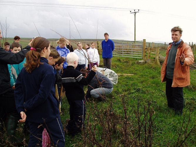 Open Farm Day At Morriston Farm